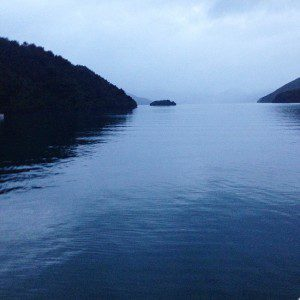 Fish & Co The Marlborough Sound at Dawn