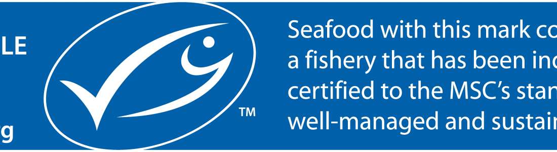 Fish & Co – Video from The Sustainable Seafood Cafe